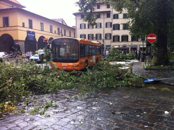 alberi-caduti-a-firenze